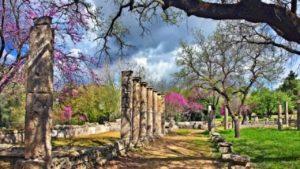 4 Pillars of Longevity of Life